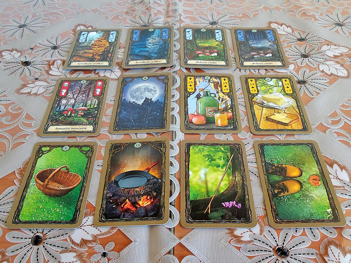 fungi-cards